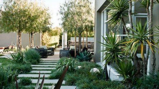 moderne tuin - natuurlijke, losse plantstijl