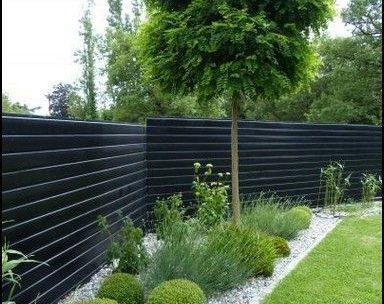 planten voor moderne tuin